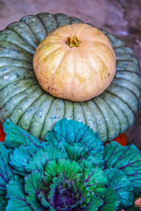 Красивые загородные осенние декоративно-красочные капустные и декоративно-острые тыквы - вертикальные стоковое изображение
