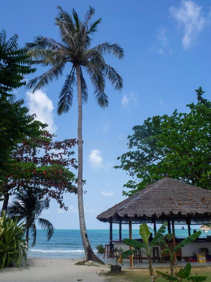 Красивые изображения на острове Phangan стоковое фото rf