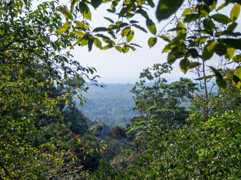 Красивые изображения на острове Phangan стоковое изображение rf