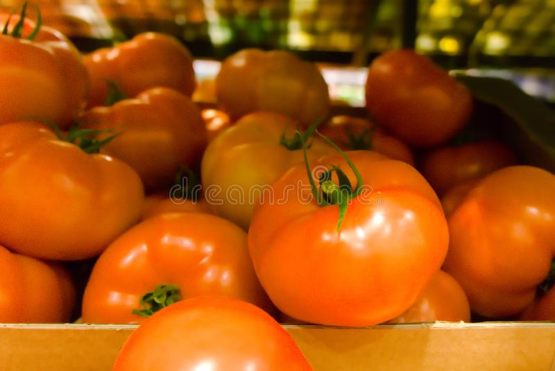 красивые красные зрелые томаты стоковые изображения