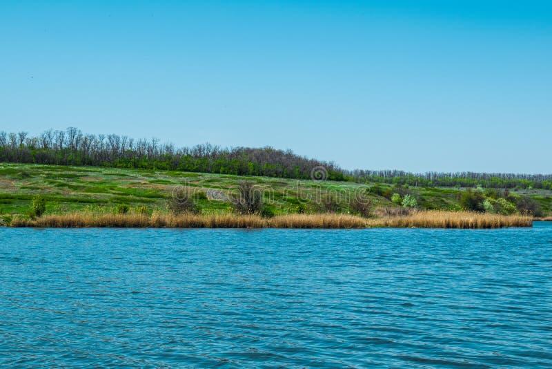 Красивые ландшафты России Зона Ростов Красочные места Зеленые растительность и реки с озерами и болотами Леса и mea стоковое изображение rf