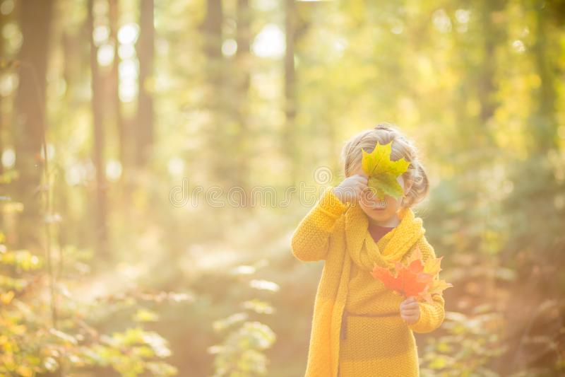 Красивые 5 лет старой белокурой девушки прячут ее сторону за кленовым листом на предпосылке forestAutumn осени солнечного стоковая фотография rf