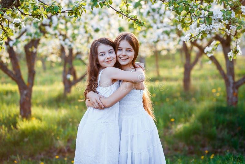 Красивые маленькие девочки в белых платьях в саде с яблонями blosoming на заходе солнца друзья обнимая 2 стоковые фотографии rf