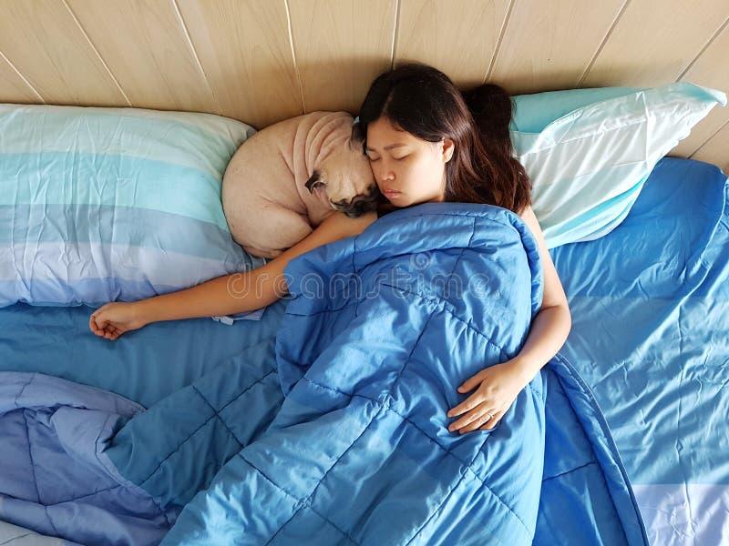 Красивые объятия молодой женщины или девушки и обнимают ее собаку щенка мопса лучшего друга, спят совместно под одеялами в дизайн стоковое изображение