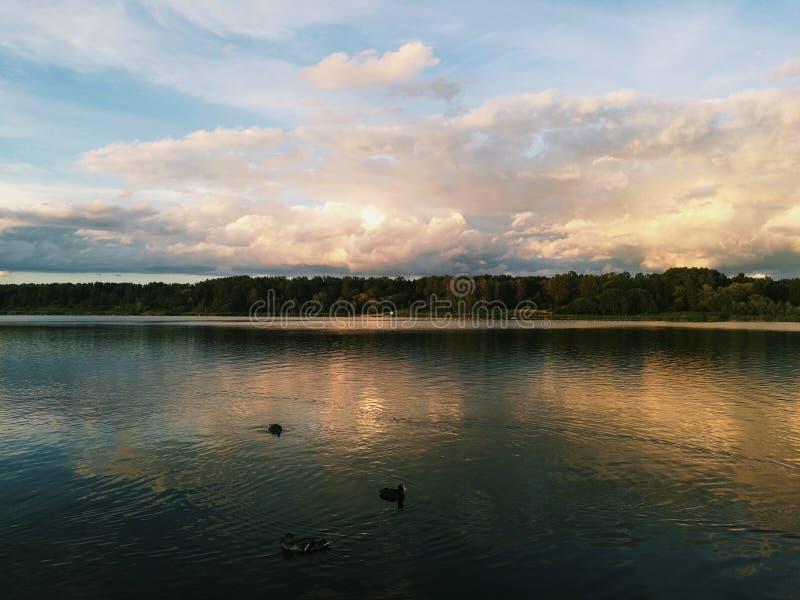 Красивые озеро и небо стоковые изображения rf