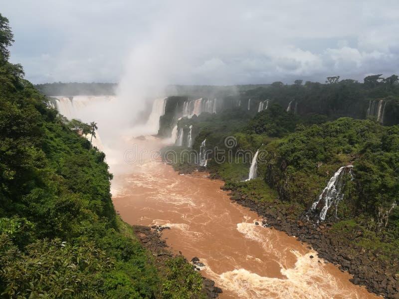 Красивые падения Iguazú стоковые изображения rf