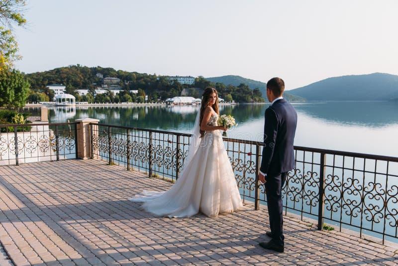Красивые пары свадьбы, жених и невеста держа руки на предпосылке озера Милая девушка в белом платье, людях в черноте стоковые фото