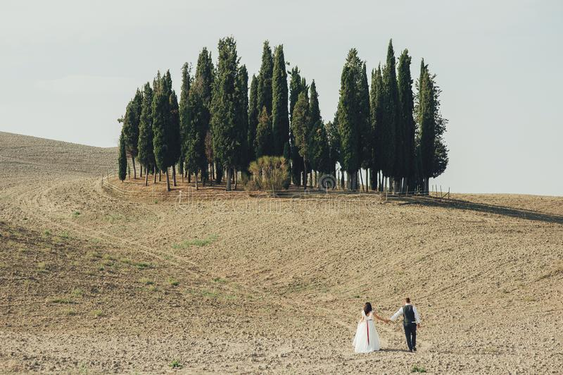 Красивые пары свадьбы, жених и невеста на пшеничном поле с cl стоковое изображение rf