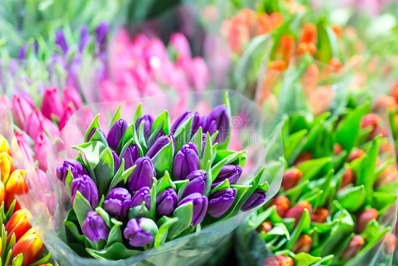 Красивые пестротканые букеты цветка Различные свежие тюльпаны на цветочном магазине Оптовая продажа или розничный магазин цветка  стоковое изображение rf