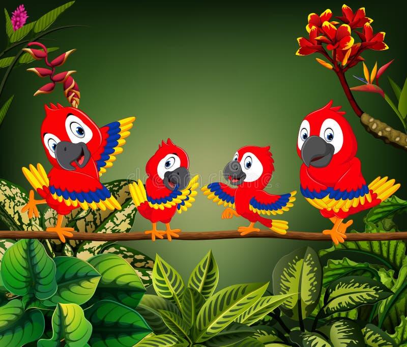 Красивые попугаи садятся на насест на хоботе совместно иллюстрация вектора