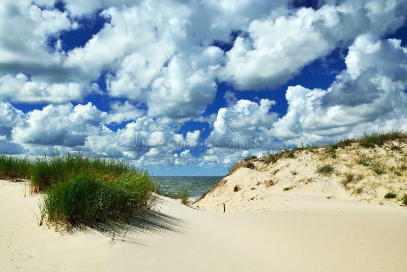 Красивые прибалтийские дюны и драматические облака кумулюса стоковое фото rf