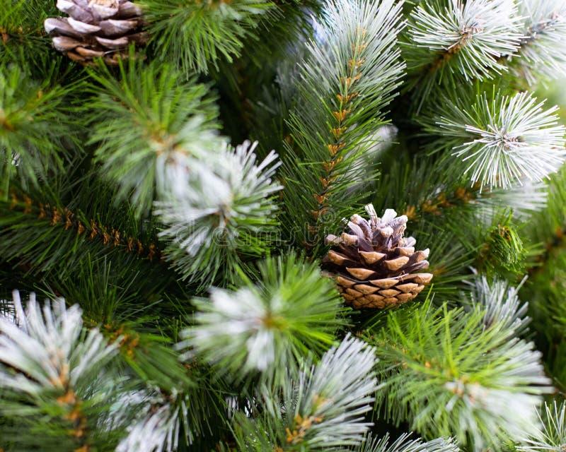 Красивые рождественские елки зеленые иглы, покрытые снегом и натуральными сосновыми конусами Искусственный ветвь ели для украшени стоковые фото