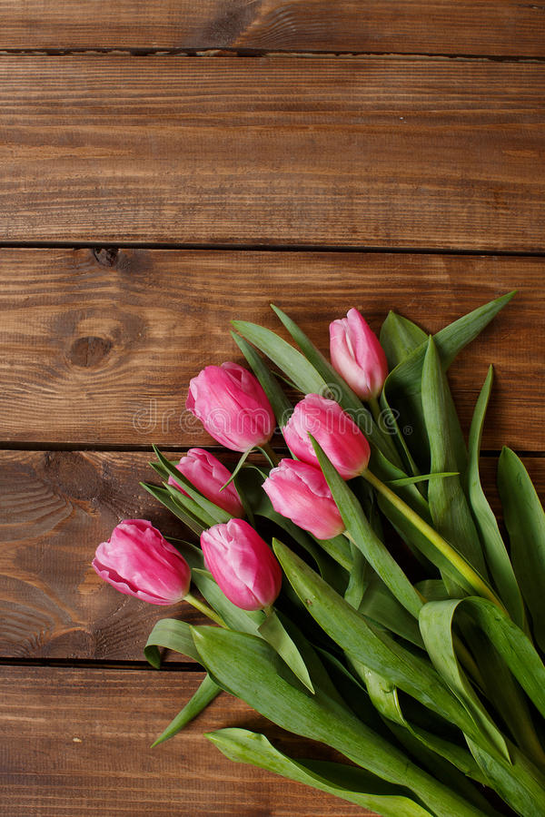 Download Красивые розовые тюльпаны на деревянной предпосылке Стоковое Фото - изображение насчитывающей торжество, бутика: 37930570