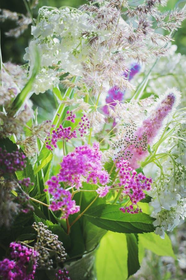 Красивые розовые цветки в солнечном свете крупный план, селективный фокус Красивейшая предпосылка Вертикальная съемка стоковое изображение rf