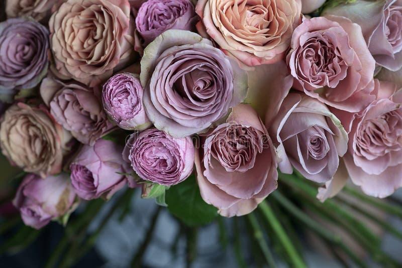 Красивые розы розовых, фиолета и персика wedding макрос крупного плана букета стоковое фото rf