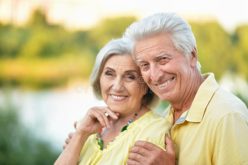 Красивые старшие пары обнимая в парке стоковые изображения