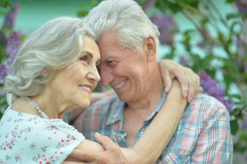 Красивые старшие пары обнимая на предпосылке сирени в парке стоковое изображение