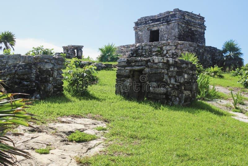 Красивые старые руины в Tulum Мексике стоковые фотографии rf