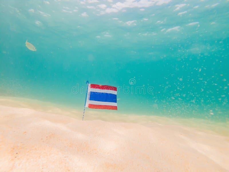 Красивые тропические рыбы на пляже с белым песком с флагом Таиланда o стоковые фото