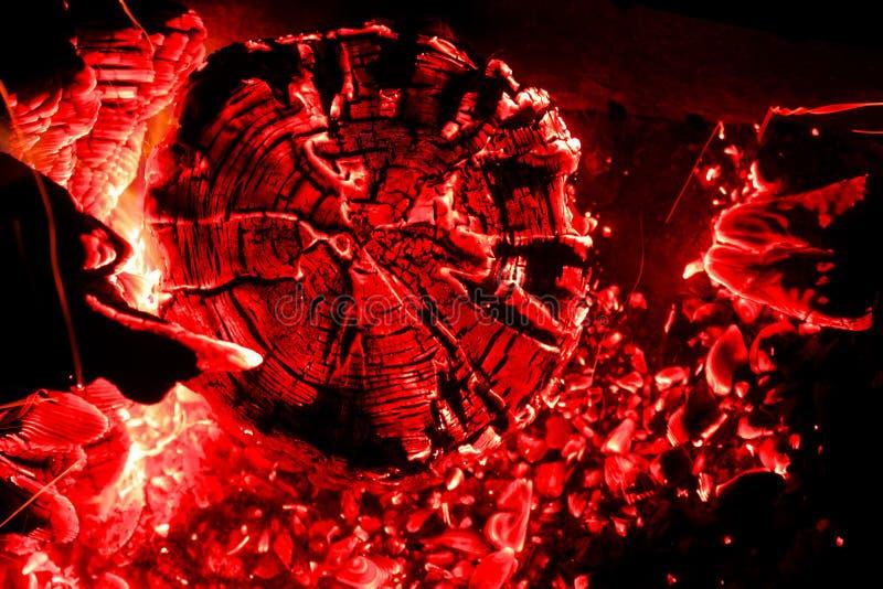 Красивые угли в гриле стоковое фото rf