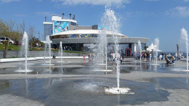 красивые фонтаны в Одессе стоковое изображение rf