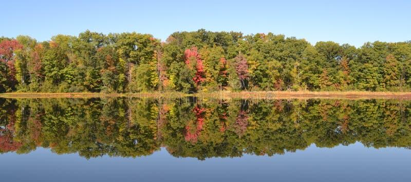 Красивые цвета дерева отражения падения на озере стоковая фотография