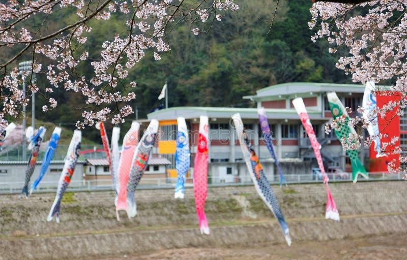 Красивые цветения Сакуры и красочный японец Koinobori сигнализируют флаги карпа летания стоковое фото rf