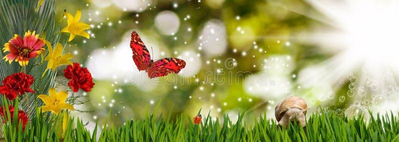 красивые цветки, бабочка и улитка в крупном плане сада стоковое фото