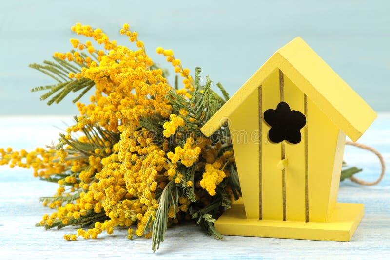 Красивые цветки желтых мимозы и birdhouse на голубой деревянной предпосылке Конец-вверх стоковые фото