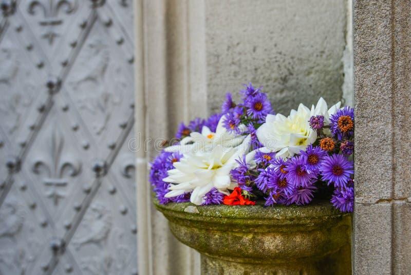 Красивые цветки на старом каменном виске стоковая фотография rf