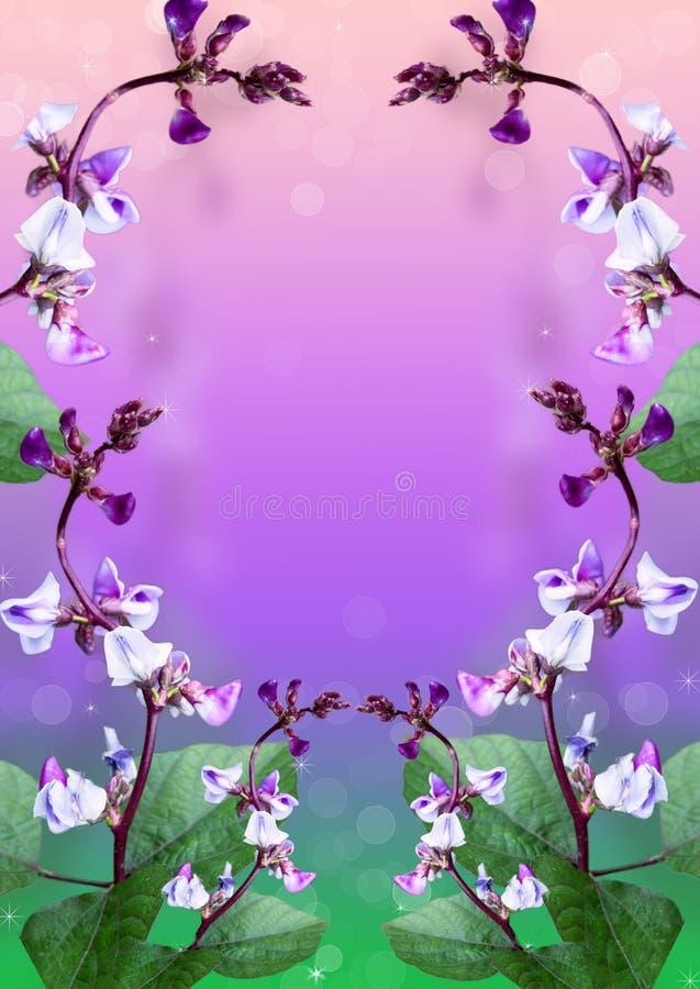 Красивые цветки на фиолетовой предпосылке. стоковые фото
