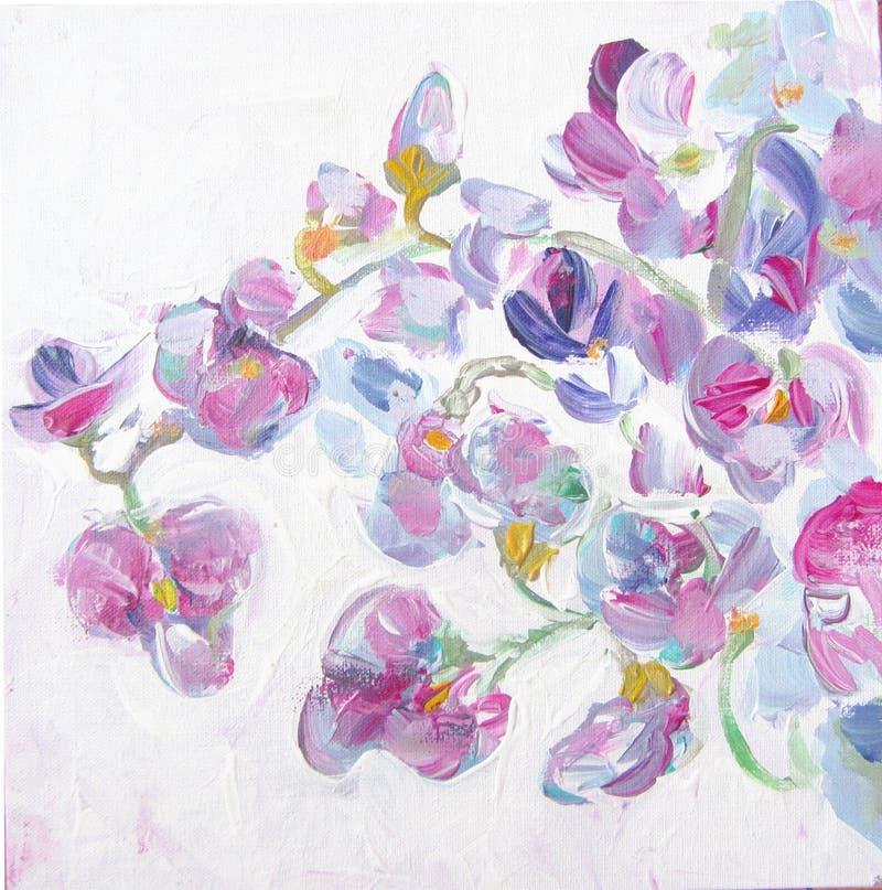 Красивые цветки пинка весны, иллюстрация акварели вектор детального чертежа предпосылки флористический Сладостный горох цветет за иллюстрация вектора