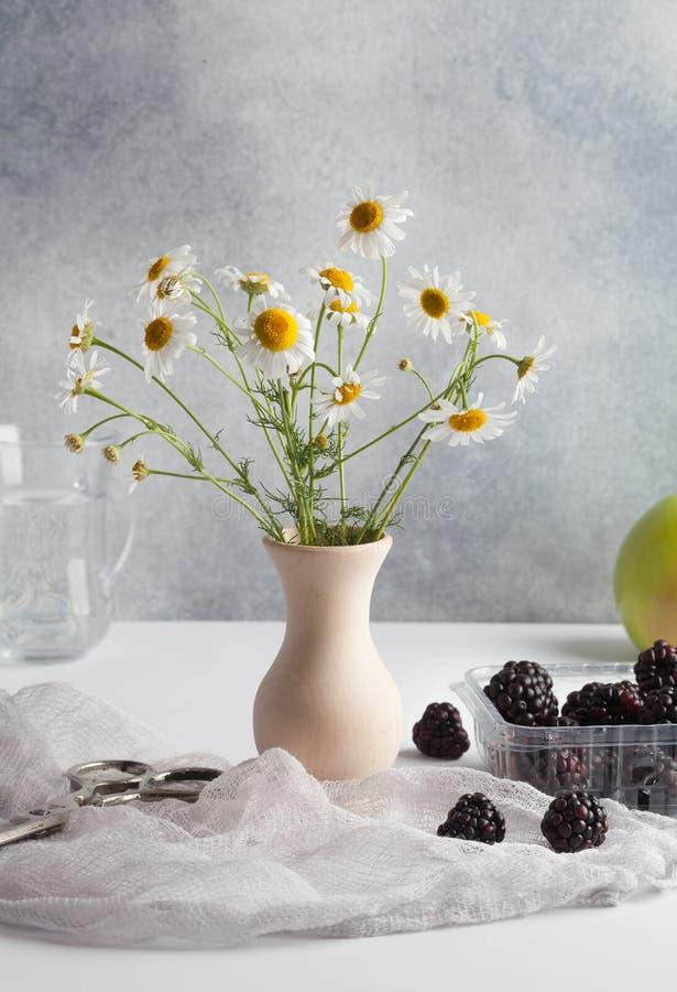 Красивые цветки стоцвета с плодами в студии стоковые изображения rf