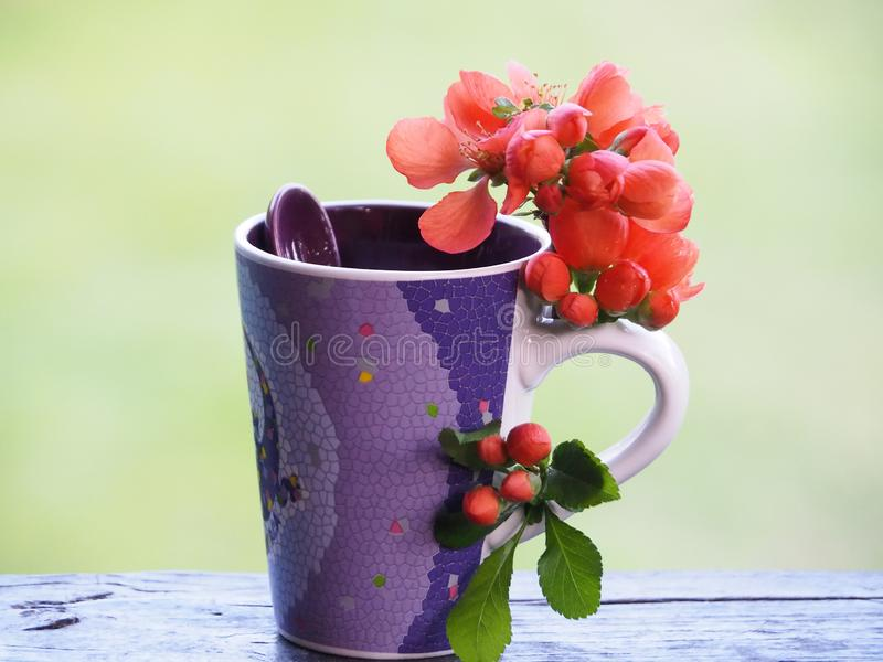Красивые чашка и цветки на краю таблицы стоковые фото