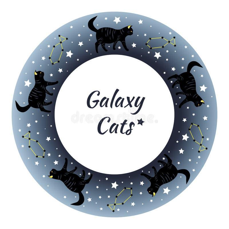 Красивые черные коты гуляя через звёздное небо стоковая фотография