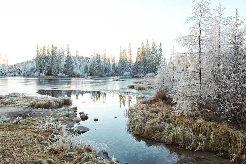 Красивый ландшафт высокое Tatras зимы стоковая фотография