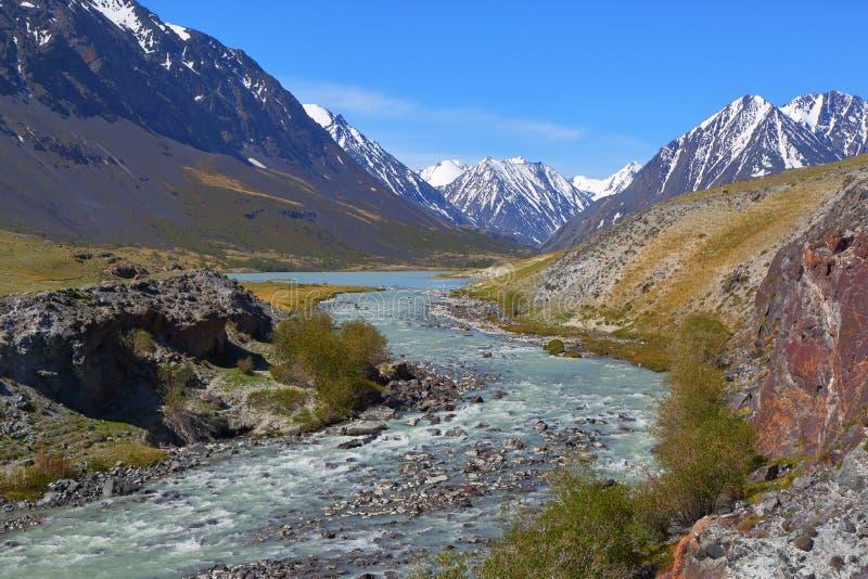 Красивый ландшафт горы с рекой в Алтай стоковые фото