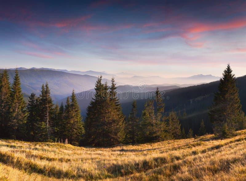 Красивый ландшафт лета в горах стоковая фотография rf