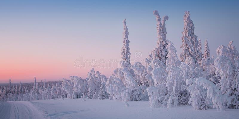 Красивый ландшафт зимы в Лапландии Финляндии стоковые фотографии rf