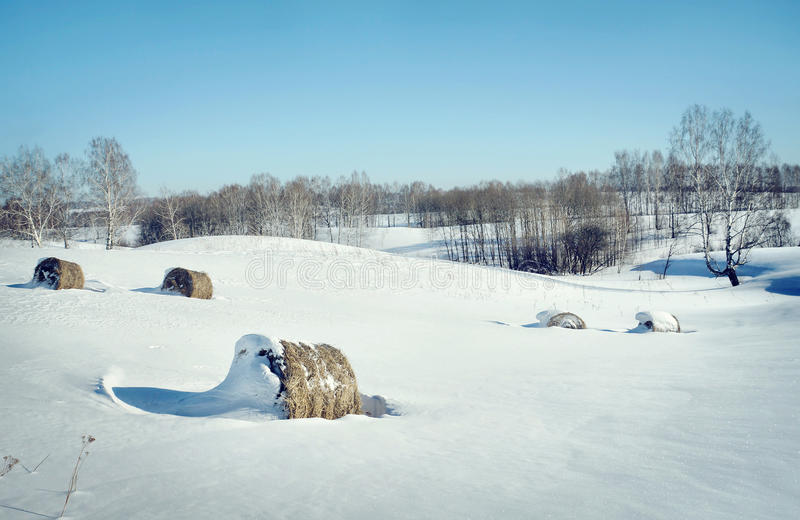 Красивый ландшафт зимы с кренами сена на белом снеге стоковые изображения