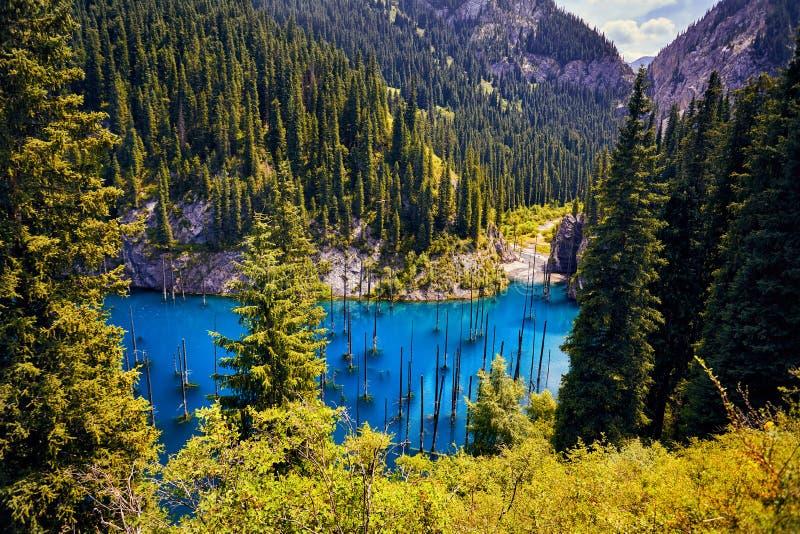 Красивый ландшафт озера горы стоковые изображения