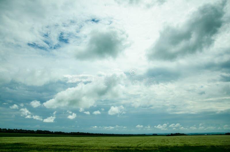 Красивый ландшафт, русская природа стоковое изображение