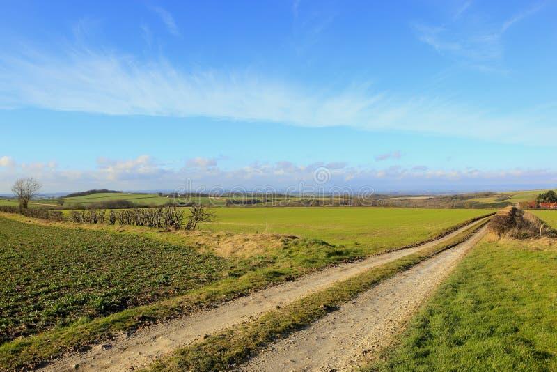 Красивый ландшафт сельского хозяйства в зиме стоковое фото rf