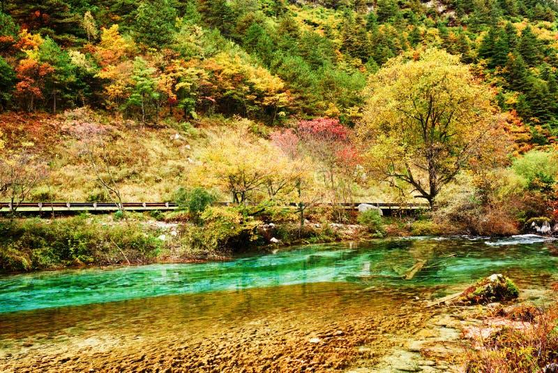 Красивый ландшафт с лесом осени и лазурь мочат стоковые фото