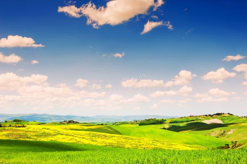 Красивый ландшафт Тосканы, Италия стоковые изображения rf