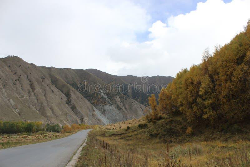 Красивый ландшафт фарфора Ганьсу стоковая фотография rf