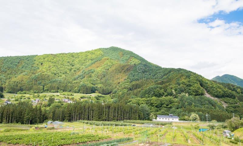 Красивый ландшафт Takayama Мураы на солнечном лете или весеннем дне и голубого неба в районе Kamitakai в северо-восточном Nagano стоковое фото rf