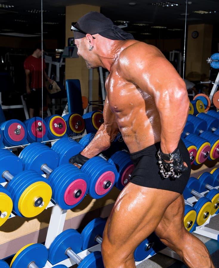 Красивый атлетический культурист человека стоковое фото