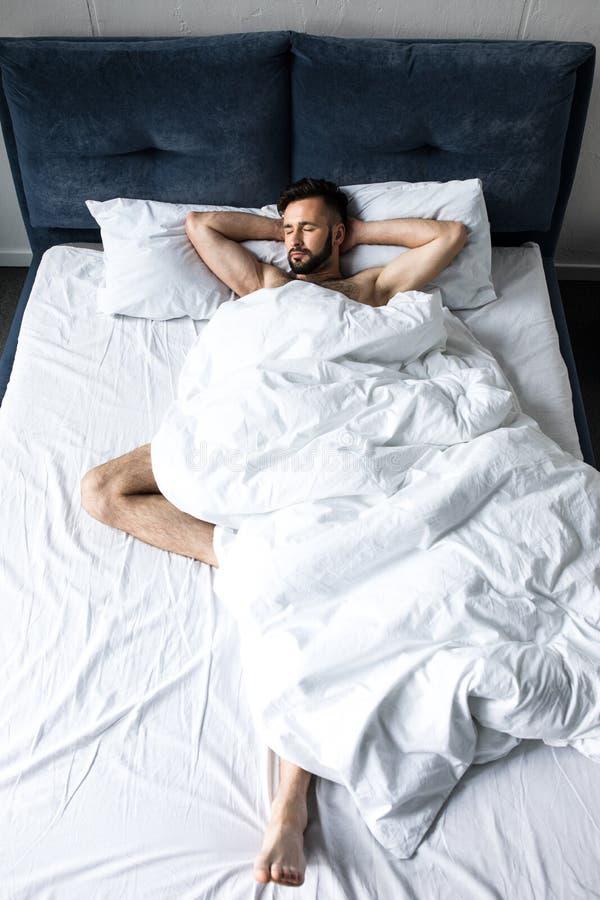 красивый без рубашки бородатый человек спать в кровати под белым одеялом стоковые изображения