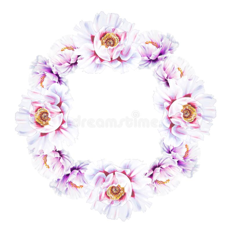 Красивый белый венок пиона E Флористическая печать Чертеж отметки иллюстрация вектора
